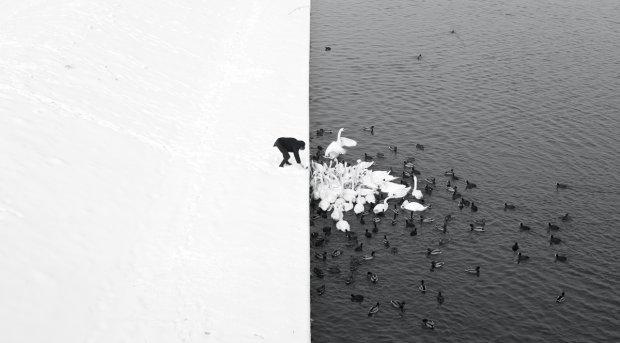 To zdj�cie uczyni�o z polskiego fotografa gwiazd�. Mamy wi�cej jego fotografii. S� znakomite! A wystawi� je w Starbucksie