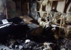 Spalili domy rodzin bojowników, zabrali się za obrońców praw człowieka