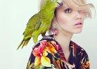 Bizuu: kolekcja wiosna/lato 2014