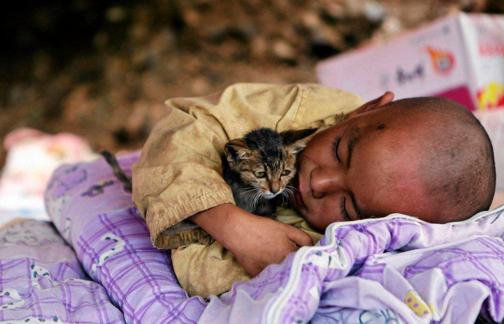 Dziecko przytula kotka w tymczasowym schronieniu po trzęsieniu ziemi w chińskiej prowincji Yunnan.