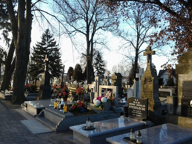Cmentarz rzymskokatolicki - Brdów