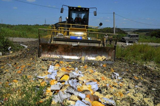Buldożerami niszczą żywność objętą embargiem. Rosjanie wściekli. 'Chory, głupi, niegodziwy pomysł'