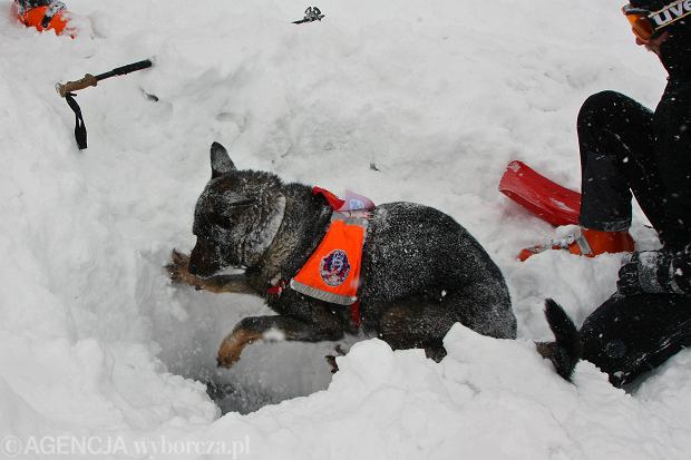 Lawina porwa�a uczestniczki kursu jaskiniowego w Tatrach. Jedna osoba nie �yje