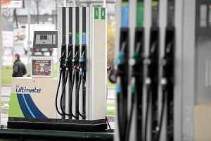 To był ostatni wakacyjny wzrost cen paliw? Na stacjach możliwe są pierwsze od dawna obniżki