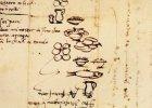 �ledzie i anchois, czyli co Micha� Anio� wpisywa� na list� zakup�w