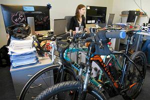 W sopockiej firmie p�ac� z�ot�wk� za ka�dy kilometr przejechany rowerem do pracy. Rekordzista zarobi�...