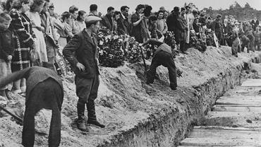 Istnieje co najmniej pięć wykazów ofiar pogromu, w których znalazły się w sumie 52 nazwiska. Ponad 40 zamordowanych zostało pochowanych na cmentarzu żydowskim w Kielcach 8 lipca 1946 r. Po złożeniu trumien w wykopie Stanisław Radkiewicz, minister bezpieczeństwa, oznajmił, że pogrom był dziełem emisariuszy rządu polskiego na Zachodzie i generała Andersa