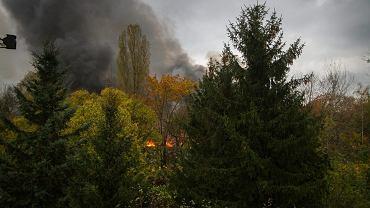Pożar w lesie (zdjęcie ilustracyjne)