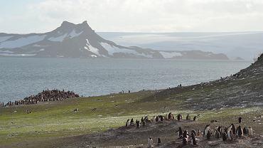 Antarktyda zmienia się nie do poznania