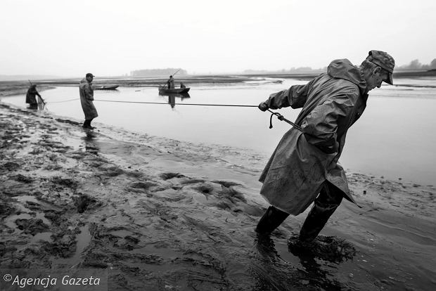 Zdjęcie numer 0 w galerii - Czas intensywnych odłowów. Rybacy w akcji, chcą zdążyć przed mrozem [ZDJĘCIA]