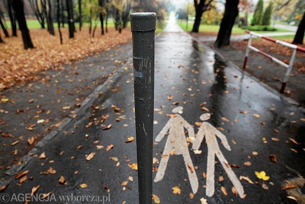 Mało widoczne słupki na alejkach w Parku Śląskim