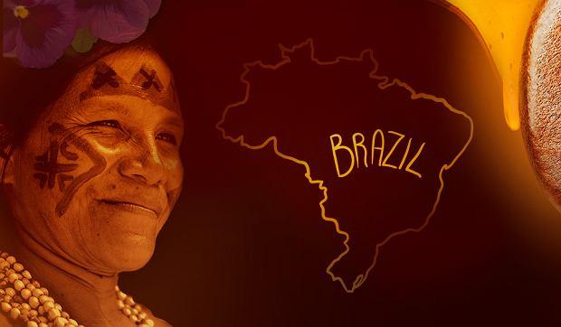 Catuai do Brasil. Królowa wśród Arabik