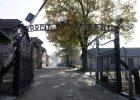 Niemcy: Rozpoczyna si� proces 93-letniego by�ego stra�nika z Auschwitz