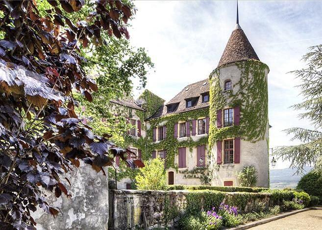 Posiadłość Chateau de Bavois