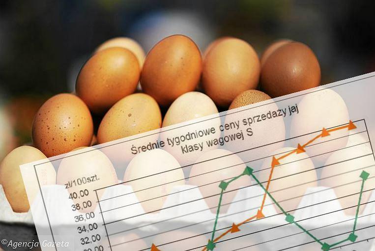 ceny jajek rosną