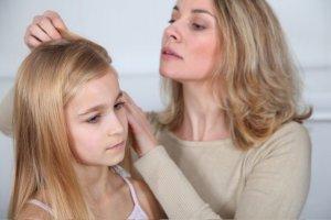 Zadbane i czyste dzieci ich nie mają? To mit, wszy każdego mogą dopaść