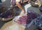 ''Głodowa książka kucharska'': placki ze zgniłych ziemniaków, smażone owady, rybie flaki