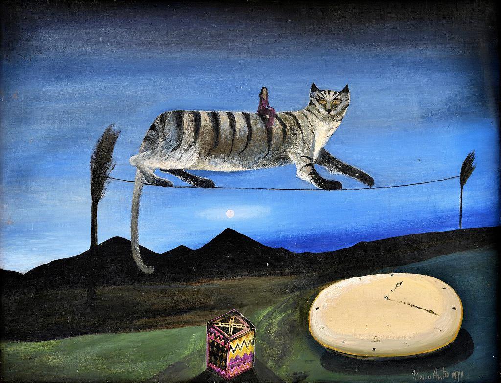Maria Anto, Kot, 1974, wł. Joanna Grabiańska /