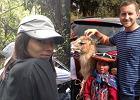 Anna Czartoryska i Micha� Niemczycki sp�dzaj� miesi�c miodowy w Peru