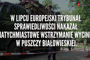 """Ekolodzy blokowali wywóz drewna z Puszczy Białowieskiej. Usłyszeli: """"ZOMO wróci i was powystrzela"""""""