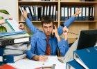 Polacy się wcale nie przepracowują, a Grecy nie są leniwi? OECD rozwiewa mity