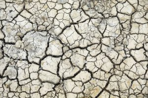 """Dziennikarz """"Wyborczej"""" nagrodzony za teksty o zmianach klimatycznych"""