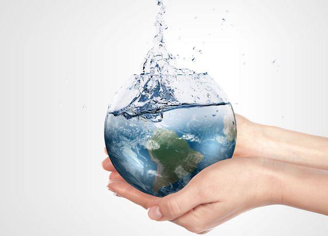 Czasem zapominamy, że woda to źródło życia: nie tylko dla nas, ale dla całej planety