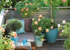 Balkon: róże nieduże