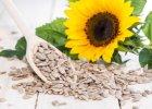 Nasiona s�onecznika - dla urody i uk�adu krwiono�nego
