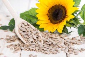 Nasiona słonecznika - dla urody i układu krwionośnego