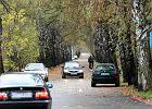 Samochody precz z Alei Brzozowej. Drogowcy znale�li na to spos�b