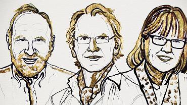 Laureaci Nagrody Nobla w dziecinie Fizyki