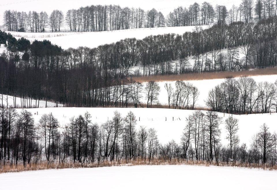Suwalski Park Krajobrazowy, okolice Szurpił
