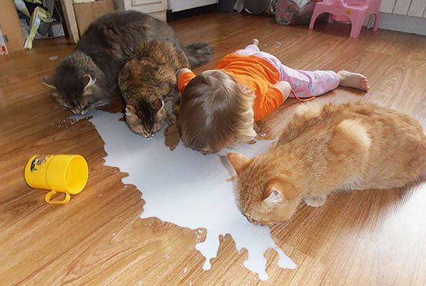 Zdjęcie numer 0 w galerii - Dlaczego nie powinno się zostawiać dzieci samych ze zwierzętami? Właśnie dlatego