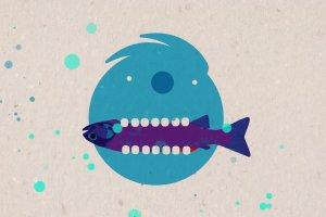Z ryb� nie pop�yniesz, czyli dlaczego warto je�� ryby