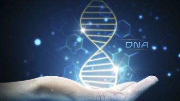 DNA - i wszystko jasne