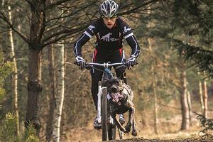 Bikejoring: gnać rowerem, co pies wyskoczy