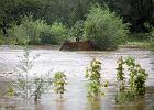 Alarmy powodziowe nadal obowi�zuj�. Sienkiewicz: Spodziewamy si� stan�w podkrytycznych [RAPORT POGODOWY]