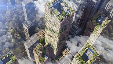 Projekt drewnianego wieżowca W350 w Tokio