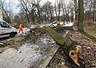 Bilans wichur nad Polsk� - ranni, zerwane dachy, po�amane drzewa