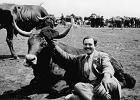Test Hemingwaya, czyli pisz jak cz�owiek