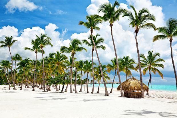 Polskie plaże wśród najpiękniejszych na świecie. Jest też kilka innych nieoczywistych miejsc [ZESTAWIENIE]