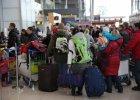 Ewakuowani z Donbasu dotarli do Polski. Schetyna: Uda�o si�