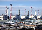 Wpływowy polityk niemieckich Zielonych za zablokowaniem Nord Streamu 2. Ukraina ma dla Niemców ofertę w zamian