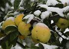 W Zakopanem śnieg, na Bałtyku sztorm. Arktyczne powietrze wlało się do Polski