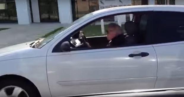 Kolejny dowód na to, że wiek to tylko liczba, a lat mamy tyle na ile się czujemy. W ostatnim czasie podczas jazdy samochodem można spotkać niecodzienne zjawiska, jak jazda pod prąd na autostradzie. Ten mężczyzna zauważył, że kierowca jadący przed nim dziwnie się zachowuje. To co zobaczył wprawił go w osłupienie.