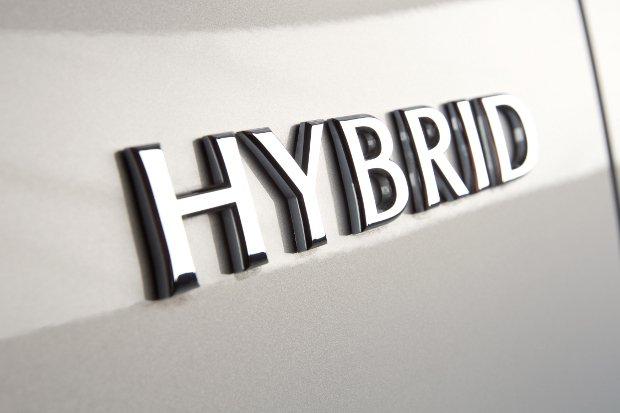 Samochody hybrydowe i elektryczne   przegląd rynku