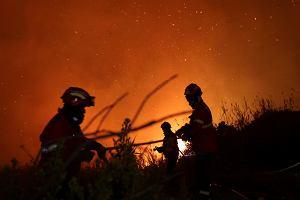 Portugalia opłakuje ofiary pożarów. Mimo desperackiej walki strażacy nie mogą opanować żywiołu
