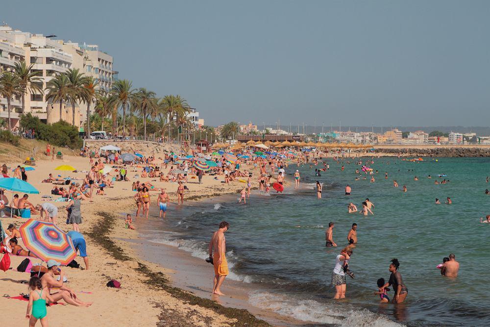 W Palmie zakazano m.in. chodzenia topless po mieście i uprawiania seksu w miejscach publicznych