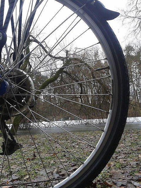 Lutowe przedwiośnie z siodełka roweru